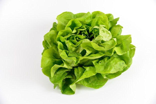salad-2114149_1920